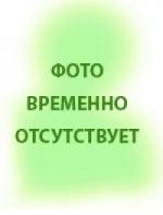 Егорова Эльвира Рафаилевна ГБОУ ДПО КГМА, 2016